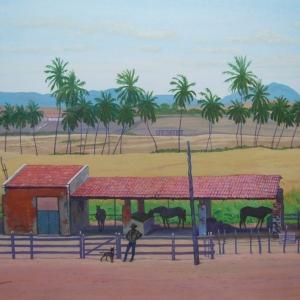 Ранчо в Жукуруту / Rancho em Jucurutú