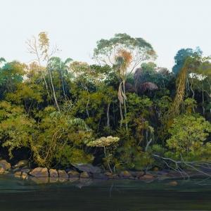 На берегах Рио Нову / Nas margens do Rio Novo
