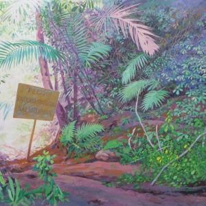 Лесная дорожка / Trilha da floresta