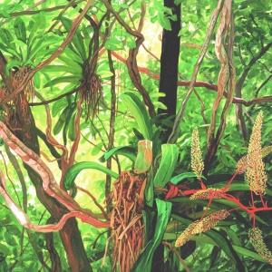 Цветущая рыбалка / Bromelia florida
