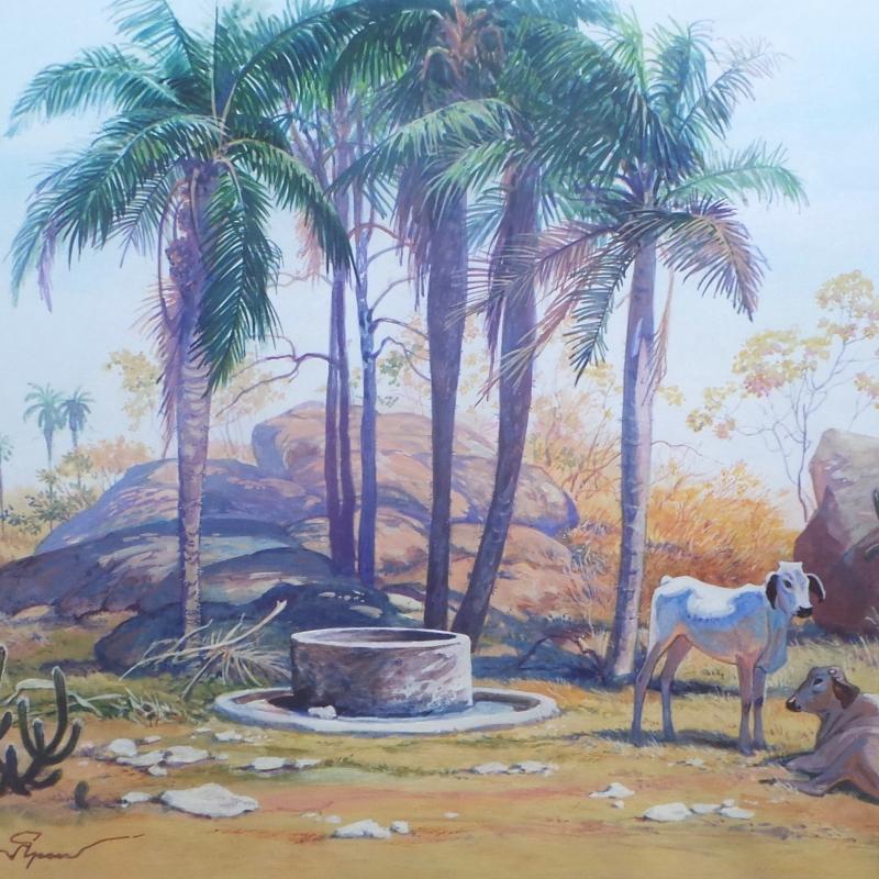 Колодец в окрестностях Сантана ду Карири (1) / Cacimba nas cercanias de Santana do Carirí (1)