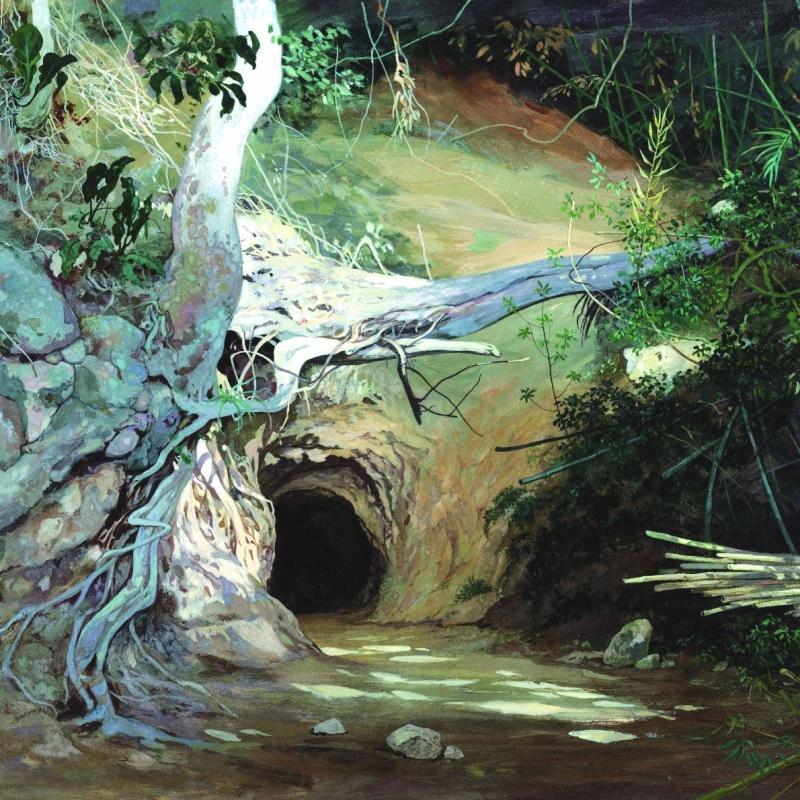 Пещера в лесу / Caverna na mata