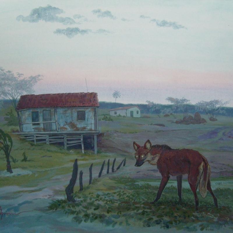 Лобу- гуарá / Lobo-guará