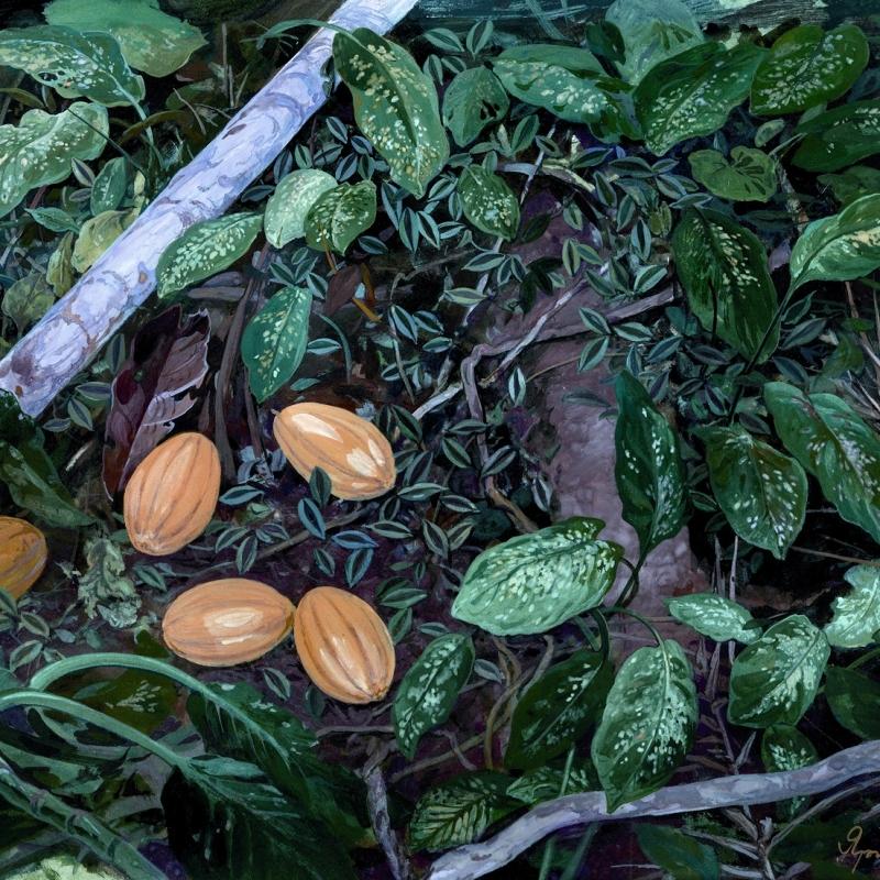 Натюрвив с плодами какао / Natureza viva com frutos de cacau