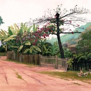 Деревенская улочка / Rua de aldeia