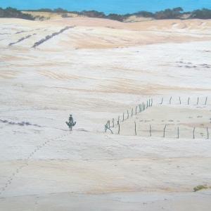 Белые пески Риу Гранде ду Норте / Areias brancas de Rio Grande do Norte