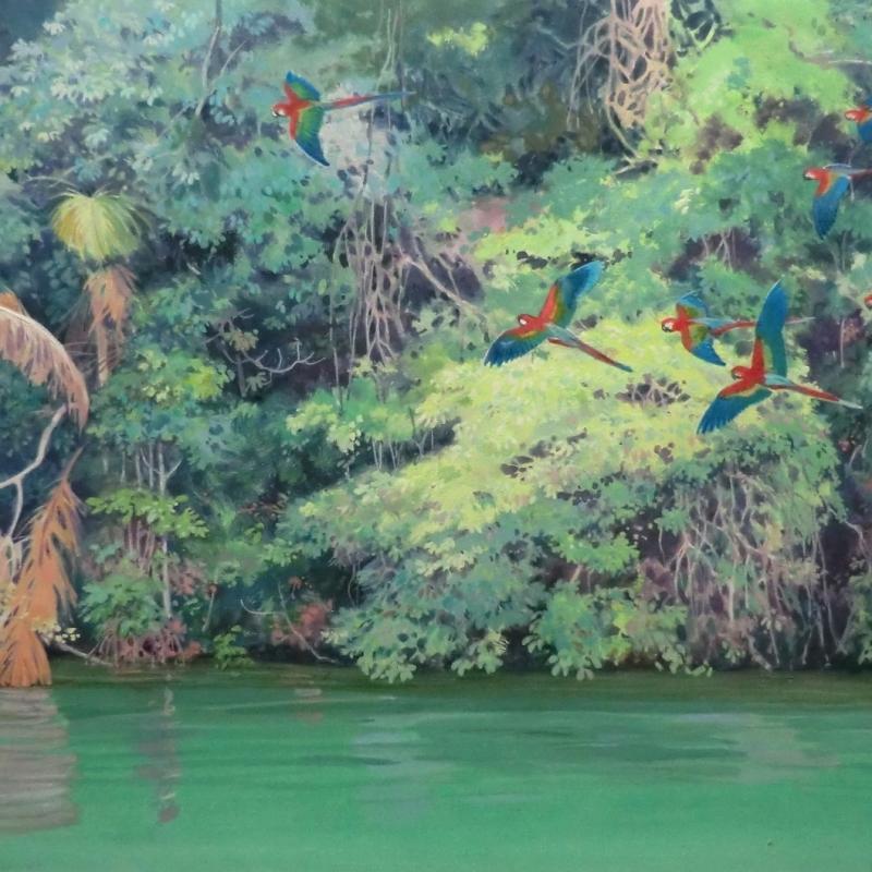 Летящие арары. Рио Уатуман / Araras. Rio Uatumã