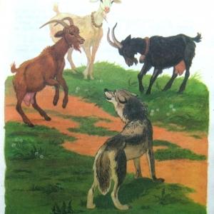 """Сказка """"Волк и три козочки"""""""