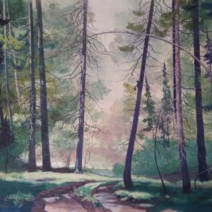 Дорога в лесу - к