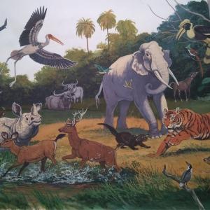 "илл. из книги В. Зотова ""На поиски животных"" (Индия)"