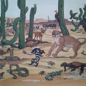 """илл. из книги В. Зотова """"На поиски животных"""" (Пустыни Северной Америки)"""