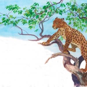 Илл. к книге о Семействе кошачьих (леопард)