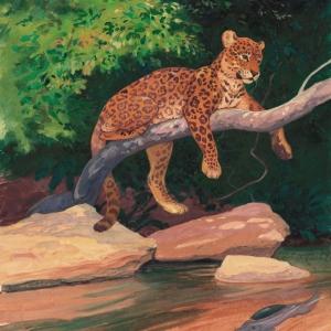 Илл. к книге о Семействе кошачьих (ягуар)