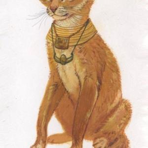 Илл. к книге о Семействе кошачьих (кошка)