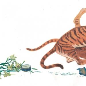 Илл. к книге о Семействе кошачьих (дерущиеся тигры)